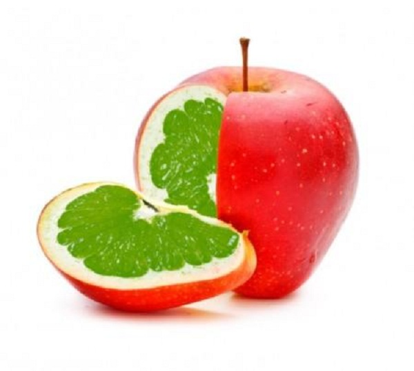 Genetically Modified Food Safety Testing Market